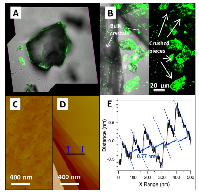 Confocal Fluorescent Microscopic Images of Protein (Gfps) Adhesion on (a) Bulk and (B)  Crushed  Cu-mof  Crystals;  Afm  Images  of  (C)  the  Bulk  and  (D)  Crushed  Mof  Crystal;  (E) Section Analysis of (D) Along the Line Revealing the Surface Terraces With a Fringe Spacing of 0.77 Nm, Matching Crystal Planes of (200)s.